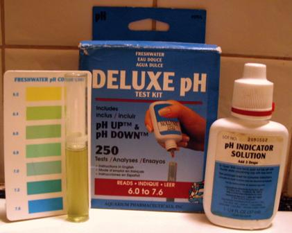 pH test of neutral tap water after acidic saliva added